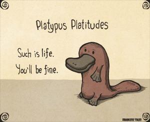 platypus-platitudes